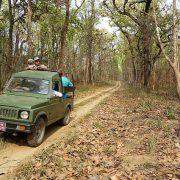 jeep_safari_chitwan